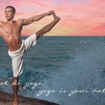Kosta, creator of Vikasa yoga... Well, I agree with the first statement.